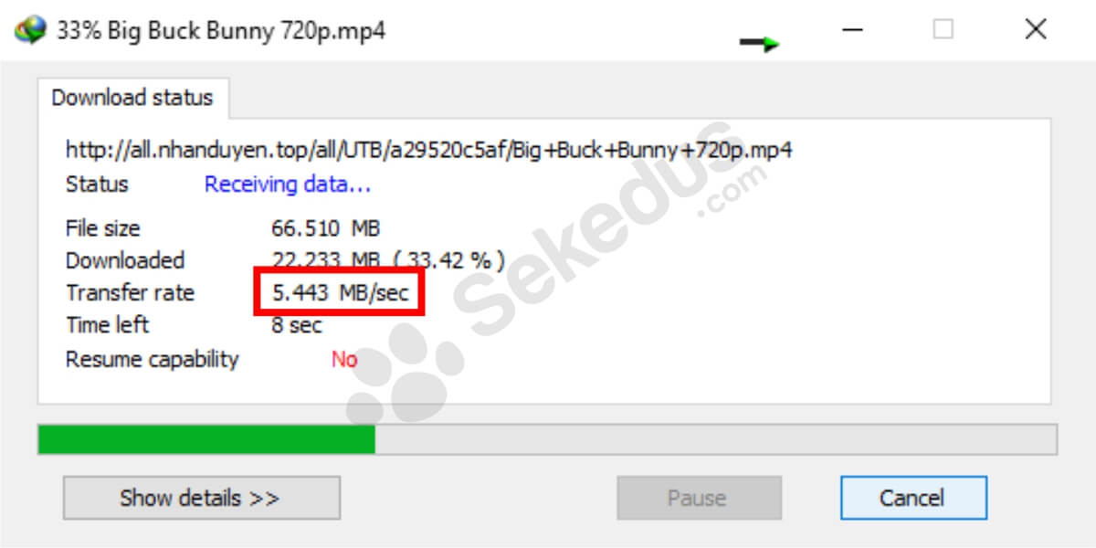 cara download uptobox: kecepatan download premium