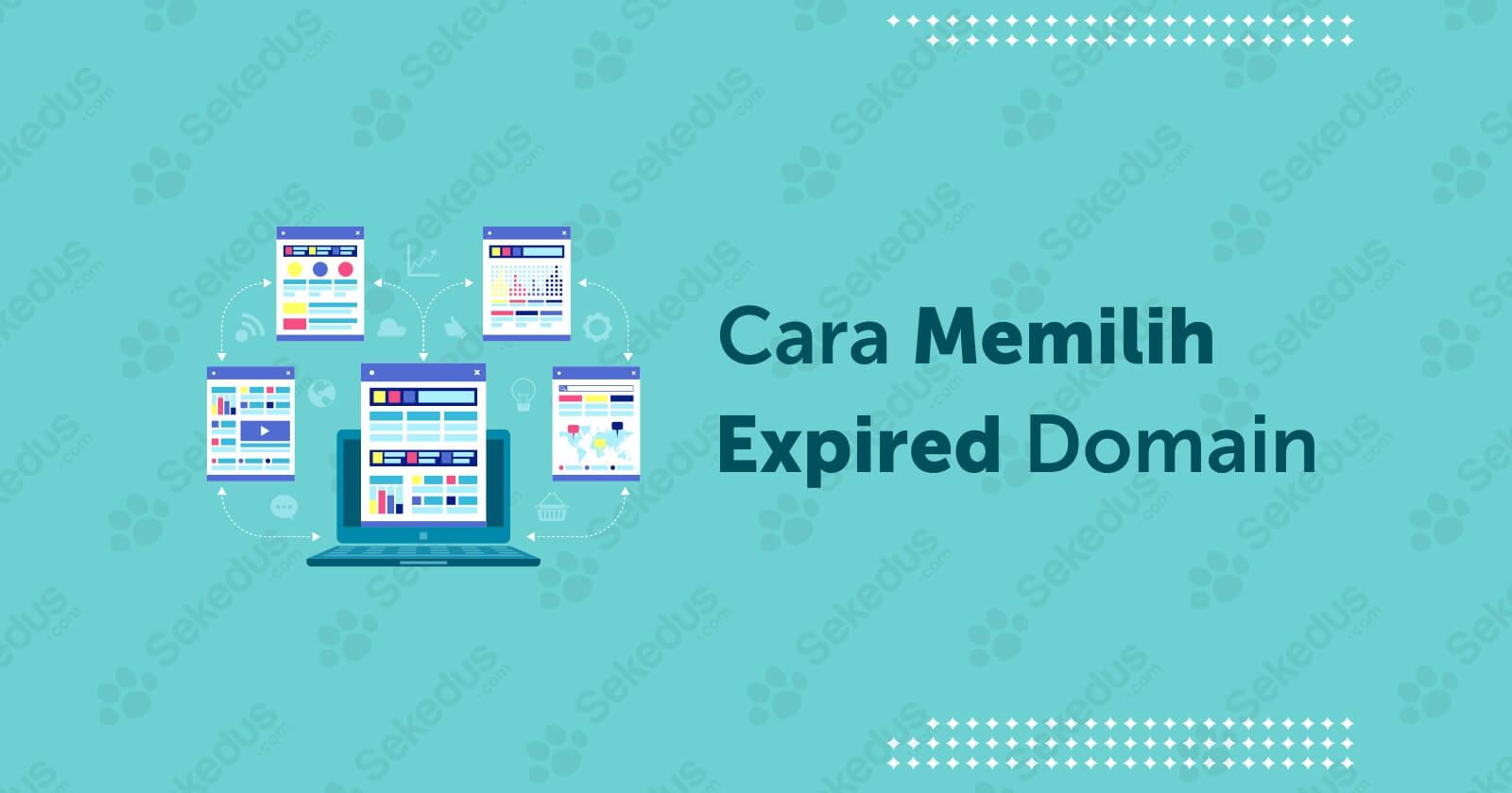 Tips Cara Memilih Expired Domain Untuk PBN